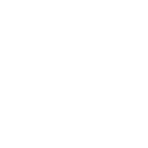 La imagen de marca de una empresa de posicionamiento web seo de Madrid representando las dos oes de Woocommerce