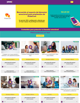 portfolio de empresa de seo en madrid proyecto web experiencia yees